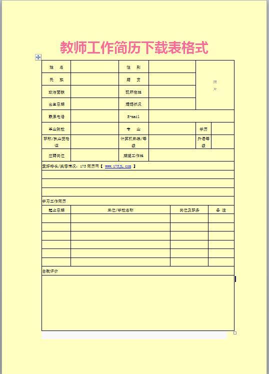 外贸业务员面试简历表格